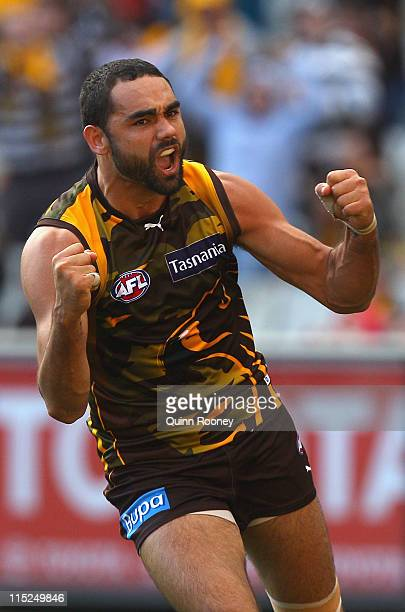 Shaun Burgoyne of the Hawks celebrates kicking a goal during the round 11 AFL match between the Hawthorn Hawks and the Fremantle Dockers at Melbourne...