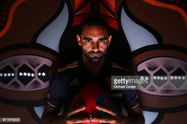 Shaun Burgoyne of the Hawthorn Hawks poses in front of an Indigenous artwork designed by teammate Cyril Rioli during a press conference at Waverley...