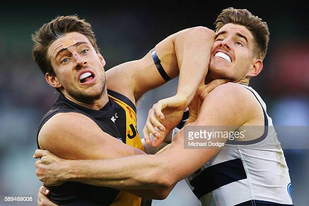 Shaun Hampson of the Tigers elbows Zac Smith of the Cats to the head when competing for the ball during the round 21 AFL match between the Richmond...