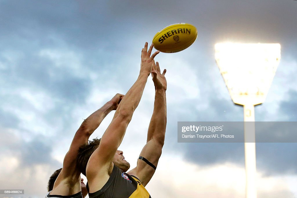 Shaun Hampson of the Tigers marks the ball during the round 21 AFL match between the Richmond Tigers and the Geelong Cats at Melbourne Cricket Ground on August 14, 2016 in Melbourne, Australia.