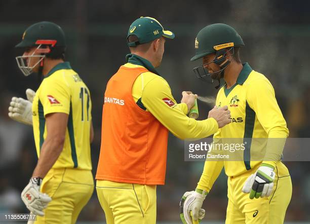 Shaun Marsh of Australia sprays Alex Carey of Australia with insect repellant during game five of the One Day International series between India and...