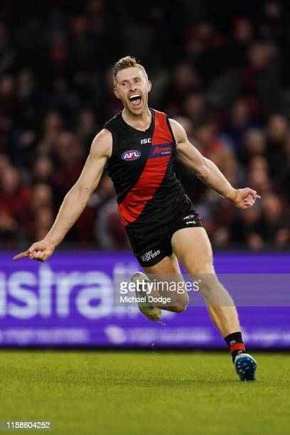 Shaun McKernan of Essendon celebrates a goal in the dying stages during the round 15 AFL match between the Essendon Bombers and the Greater Western...