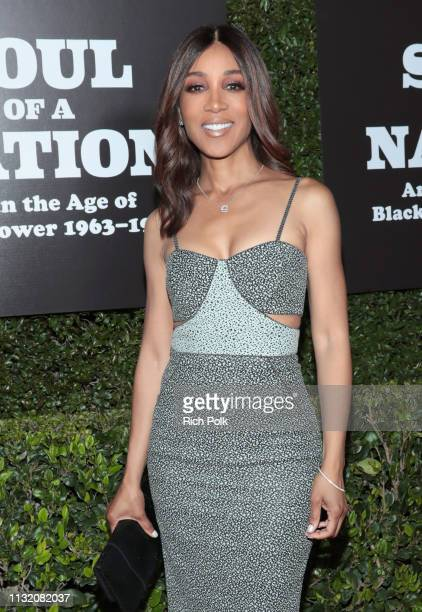 Shaun Robinson attends The Broad Museum celebration for the opening of Soul Of A Nation Art in the Age of Black Power 19631983 Art Exhibition at The...