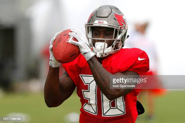 Shaun Wilson of the Bucs makes a catch during the joint training camp work out between the Tampa Bay Buccaneers and the Tennessee Titans on August 16...