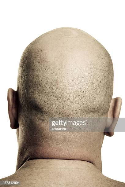 Shaved Man Head Rear View