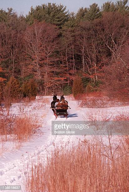 Shawn Hennigan and Susan Correia ride Missy and Choice on a jaunt through the woods of North Marshfield with customers Teresa Tallarico of Marshfield...