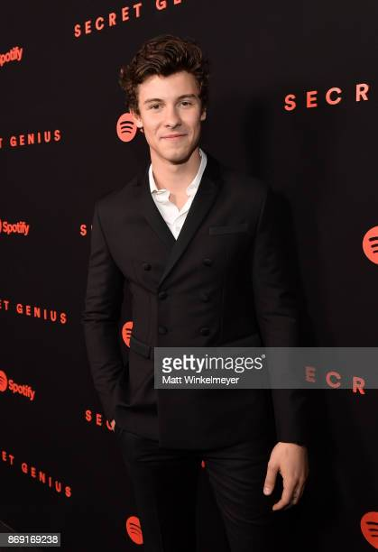 Shawn Mendes attends Spotify's Inaugural Secret Genius Awards hosted by Lizzo at Vibiana on November 1 2017 in Los Angeles California
