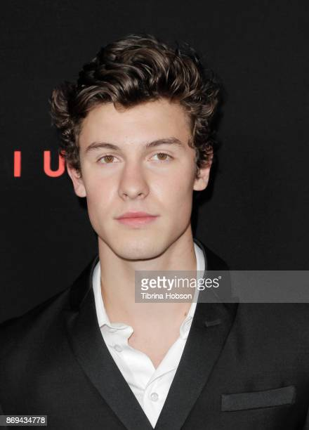 Shawn Mendes attends Spotify's Inaugural Secret Genius Awards on November 1 2017 in Los Angeles California