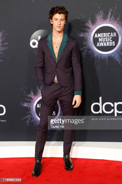 Shawn Mendes attends the 2019 American Music Awards at Microsoft Theater on November 24 2019 in Los Angeles California
