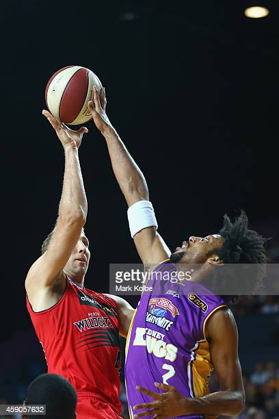 Shawn Redhage of the Wildcats has his shot blocked by Josh Childress of the Kings during the round six NBL match between the Sydney Kings and the...