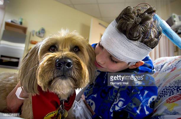 Shawn Vella of Cookstown gives Shaynee a hug while at SickKids Hospital Shaynee is a trained wheaten terrier therapy dog which visits children once a...