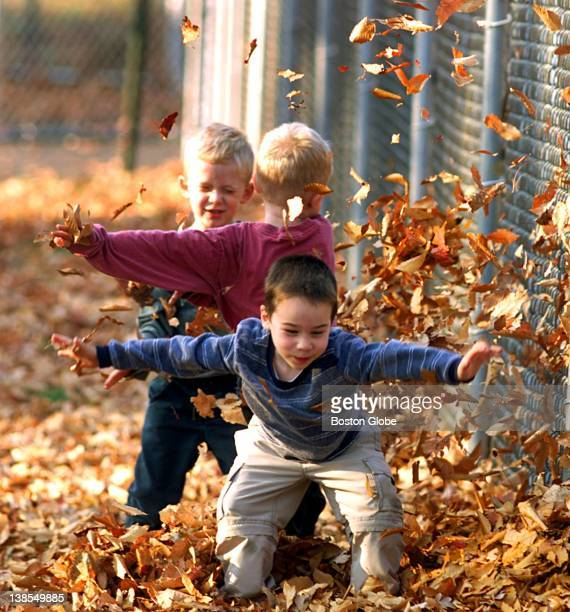 Shayne Irwin of Braintree plays in the fallen leaves at Sunset Lake Park along with brothers Nicholas and Zachary DeSouza both 4 from Abington