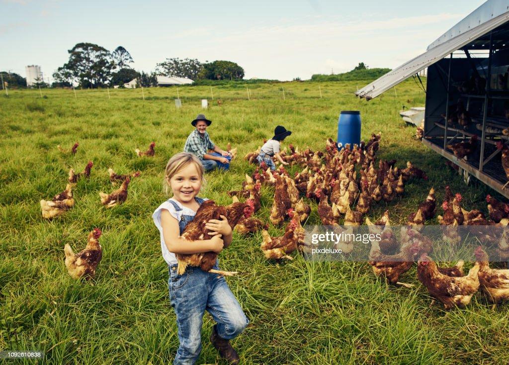 Ze houdt van zorg voor de kippen : Stockfoto