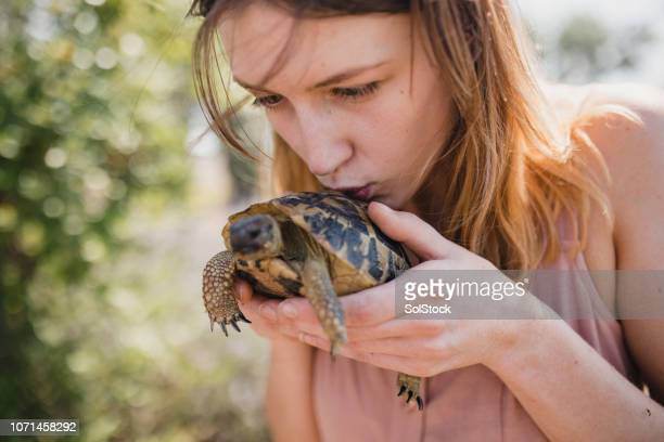 she loves wildlife - living organism stock pictures, royalty-free photos & images