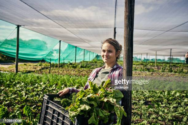 she prides herself on her produce - agricultural occupation stock pictures, royalty-free photos & images