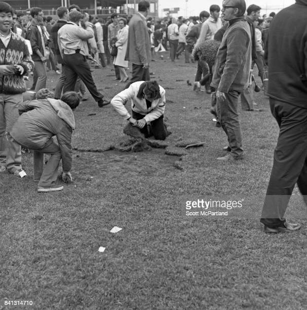 Fan celebration spirals out of control as some begin to cut large chunks of grass out of the field after the Mets win it all in Game 5 of the World...