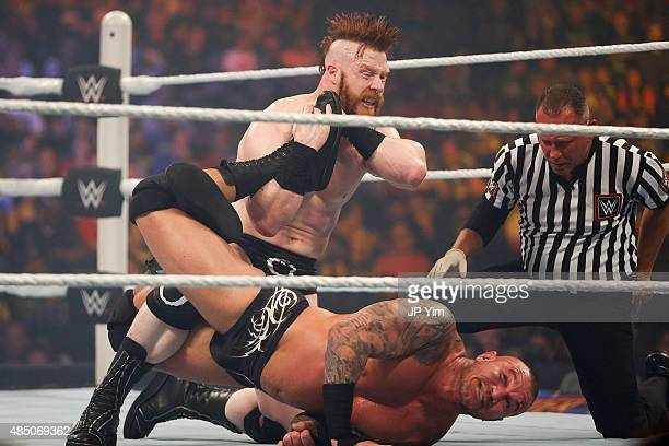 Sheamus and Randy Orton battle it out at the WWE SummerSlam 2015 at Barclays Center of Brooklyn on August 23 2015 in New York City