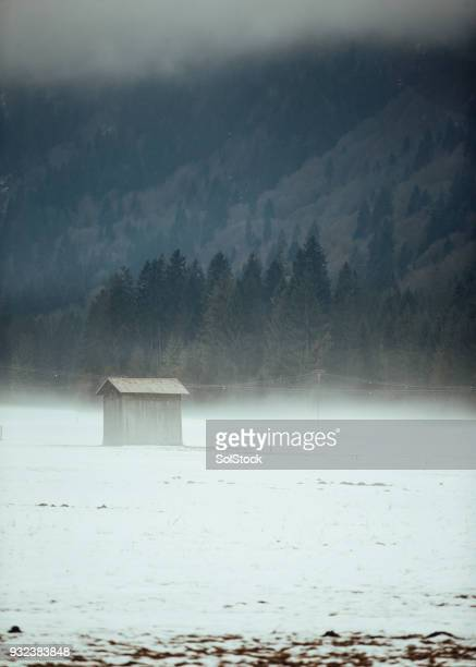 Shed in a Blizzard