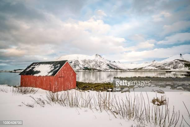 """derramar em uma paisagem de inverno nevado no lofoten na noruega - """"sjoerd van der wal"""" or """"sjo"""" - fotografias e filmes do acervo"""