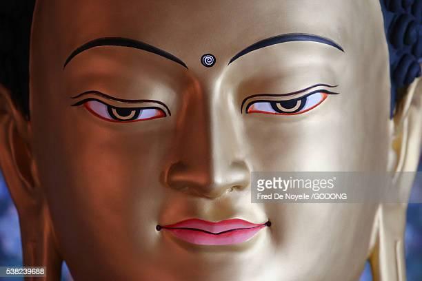 Shedrub Choekhor Ling monastery. Buddha statue.