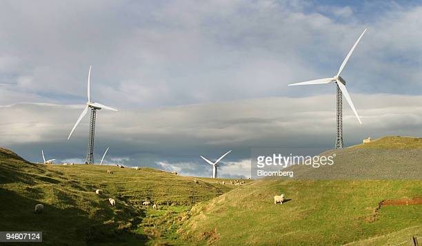 Sheep and windmills are seen in the Tararua Rangers, located 15 minutes outside the city of Palmerston North in New Zealand, June 15, 2003. New...