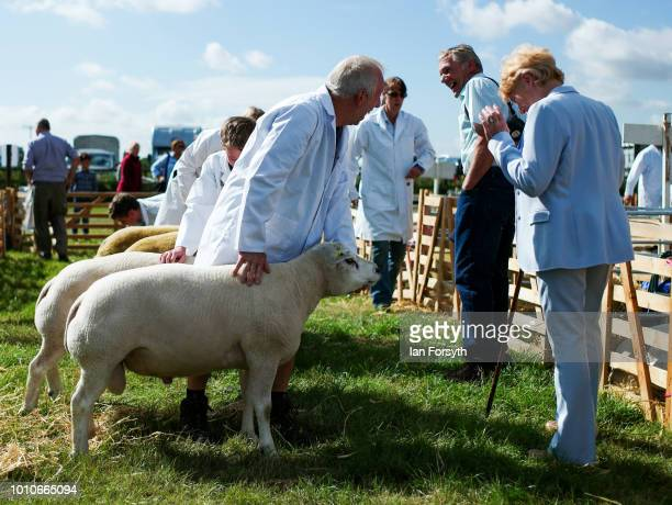 Sheep are held by their owners as they are judged during 152nd the Ryedale Country Show on July 31 2018 in Kirbymoorside England Held in Welburn Park...