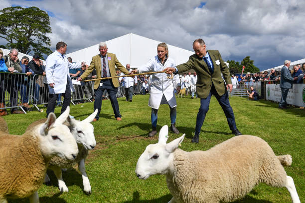 GBR: Royal Highland Show Opens To The Public