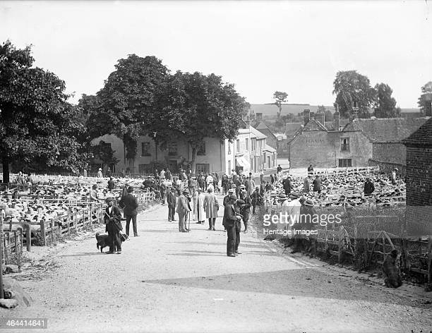 Sheep fair at East Ilsley Berkshire c1860c1922 Prospective buyers looking at sheep in pens in the village market place with shepherds and their sheep...