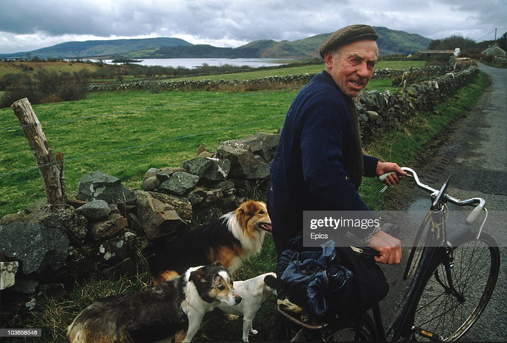 A sheep farmer with his dogs pushes a bike along the rural lanes of County Mayo, circa 1995.