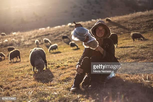 Sheep herding woman
