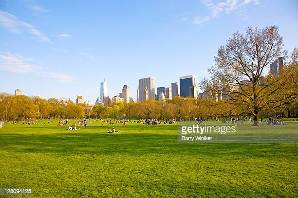 Sheep Meadow in late afternoon in spring, with office towers of Midtown, Central Park, New York, New York