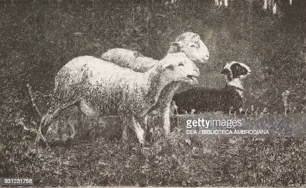 Sheep painting by Francesco Paolo Michetti engraving from L'Illustrazione Italiana Year 3 No 15 February 6 1876