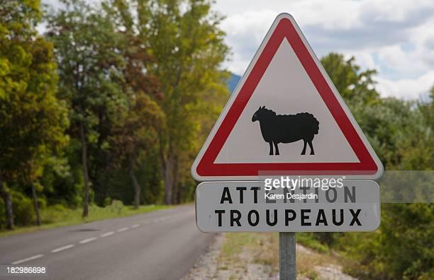 Sheep roadsign warning, France