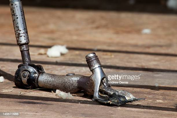 sheep shearing clippers - andrew dernie stock pictures, royalty-free photos & images