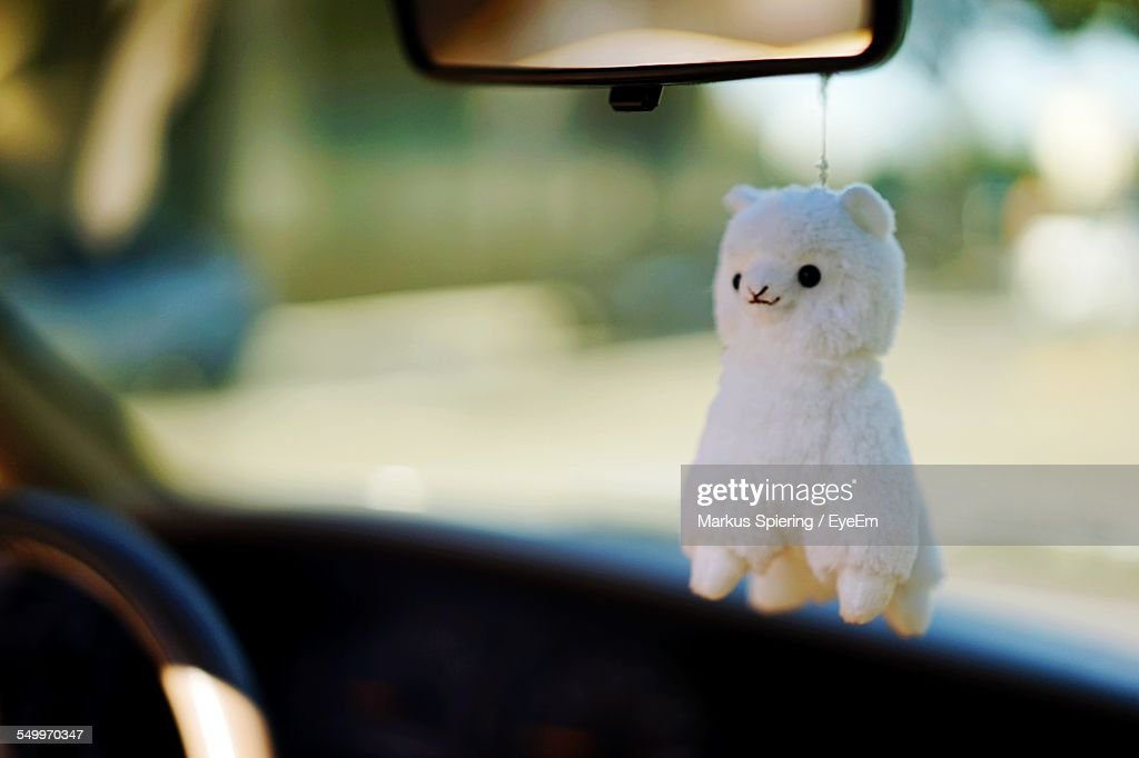 Sheep Toy Hanging In Car : Stock Photo