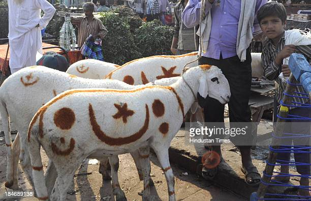 Sheep with moon and star dyed on their backs ready to be sold ahead of Bakri Eid outside Jama Masjid on October 15 2013 in New Delhi India Eid alAdha...