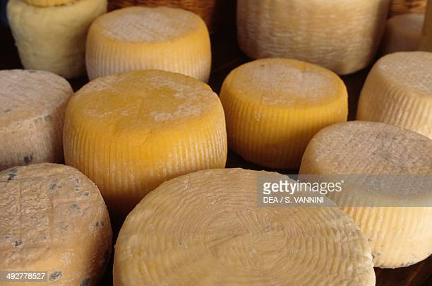 Sheep's cheese, Castel del Monte, Gran Sasso National Park, Abruzzo, Italy.