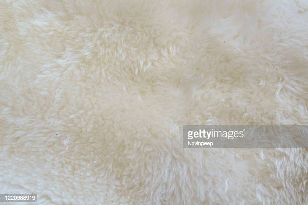 sheepskin carpet texture - fluffy stock pictures, royalty-free photos & images