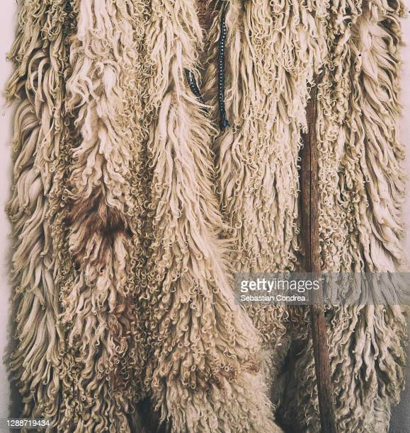 sheepskin coat, worn by shepherds caring for the sheepfold. - coat stock pictures, royalty-free photos & images