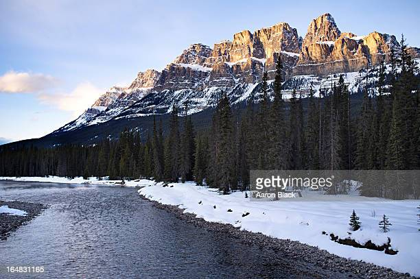 sheer limestone mountain above trees and river. - castle mountain stock photos and pictures