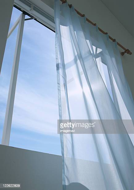 Sheer window panel and window