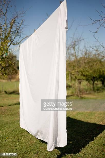 Sheet drying on washing line