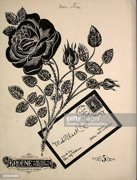 Sheet music cover image of the song 'Mah Black Rose of Georgy' with original authorship notes reading 'Words by Chas Alf Williams Music by Stella...