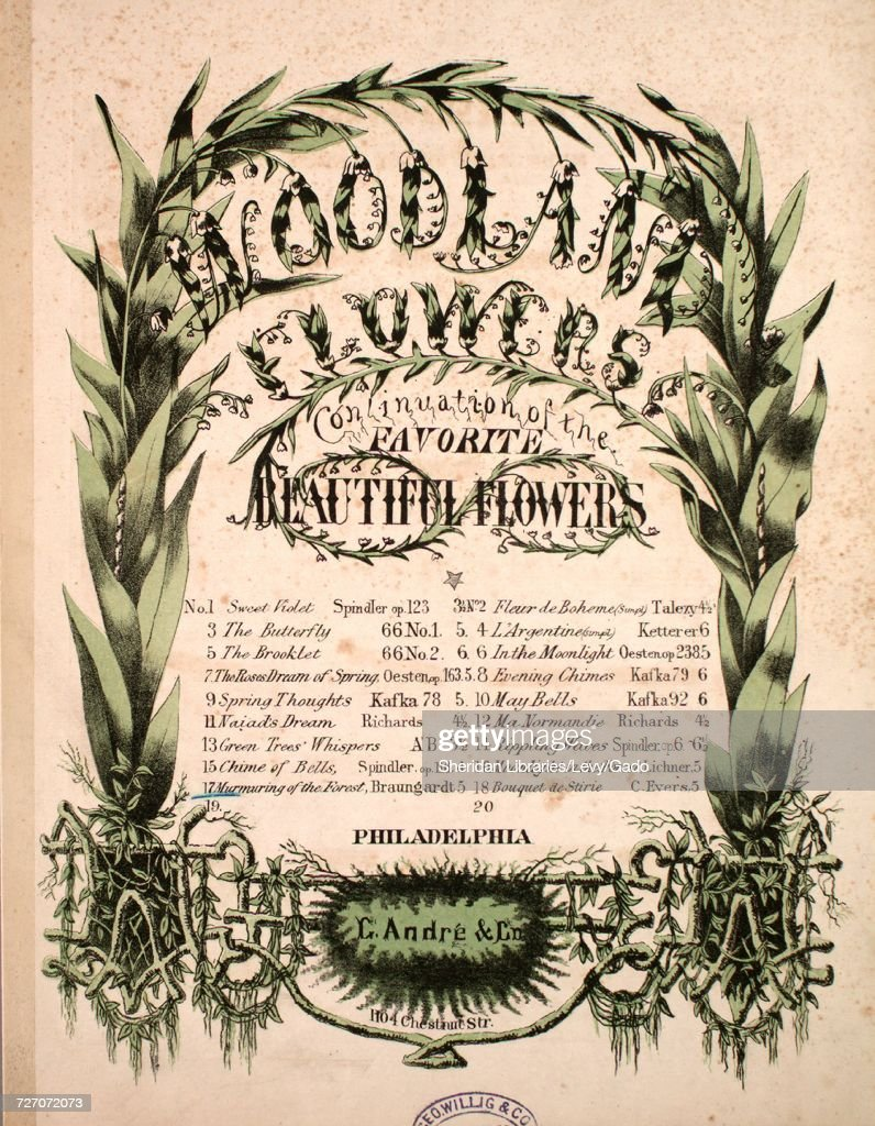 Sheet music cover image of the song woodland flowers continuation woodland flowers news photo mightylinksfo