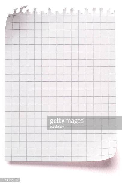 Sheet of blank maths paper isolated on white