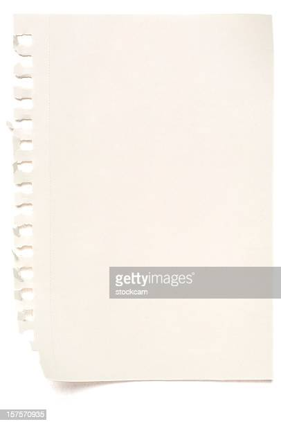 sheet of white blank note paper isolated - lined paper stock photos and pictures