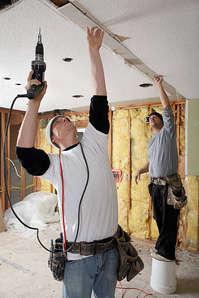 ceiling insulation services