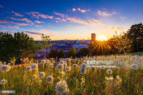 sheffield sunset - sheffield stock pictures, royalty-free photos & images