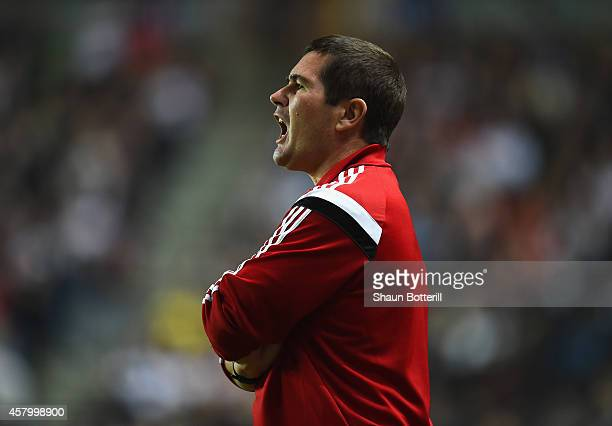 Sheffield United manager Nigel Clough during the Capital One Cup Fourth Round match between MK Dons and Sheffield United at Stadium mk on October 28...