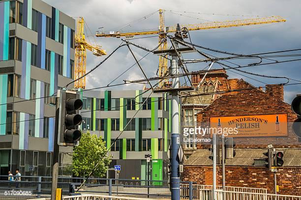 Sheffield University tram stop